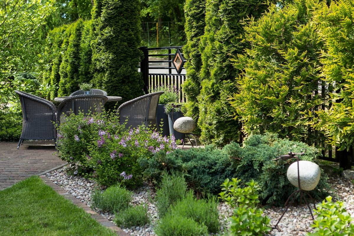 Fotografia przedstawia ogród przy ośrodku wypoczynkowym Domki i Pokoje BOSMAN